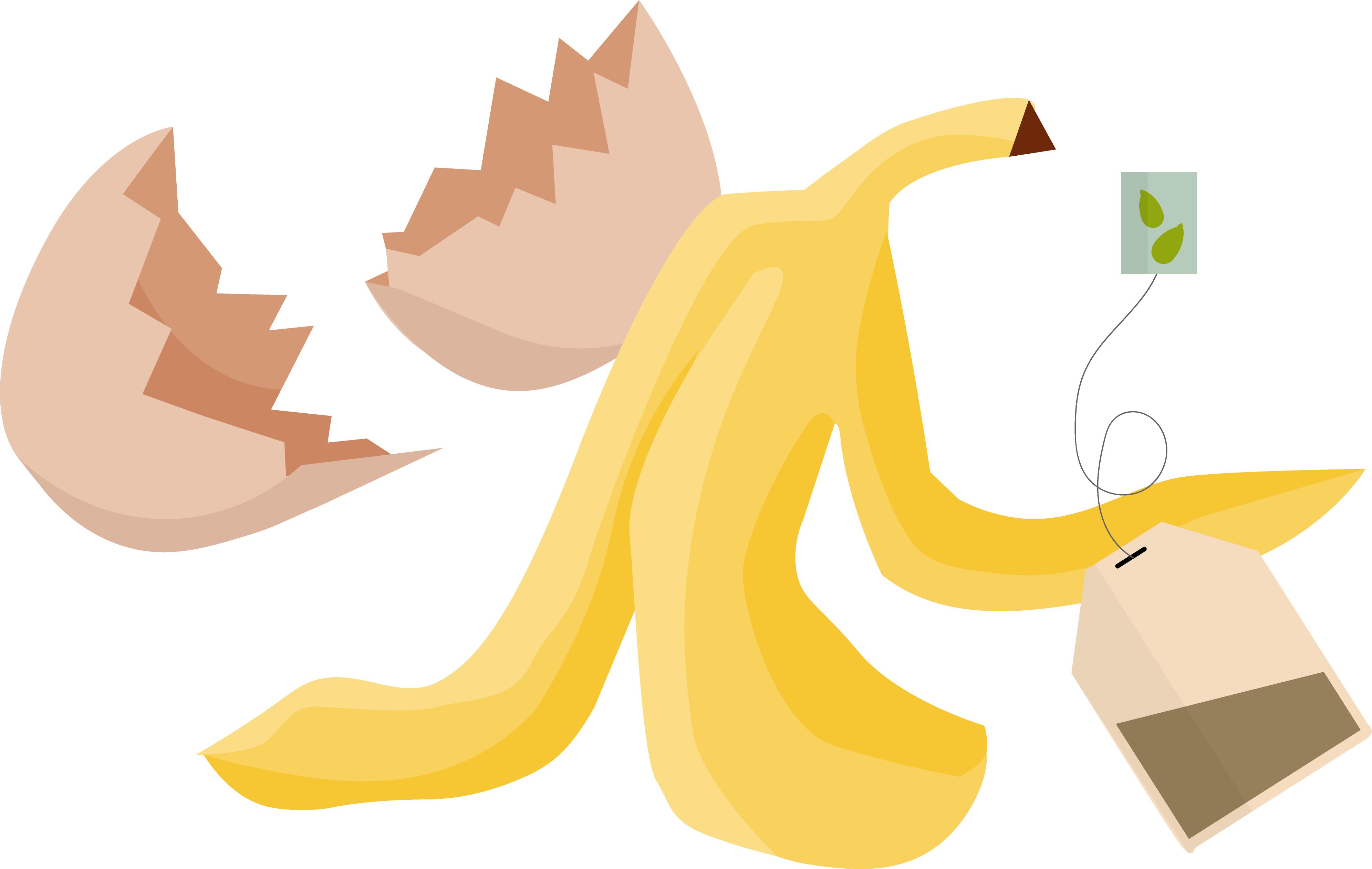 Äggskal, bananskal, tepåse.